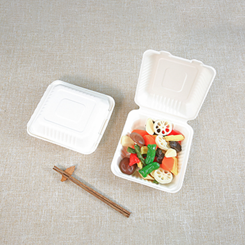 Bagasse to go box | Union
