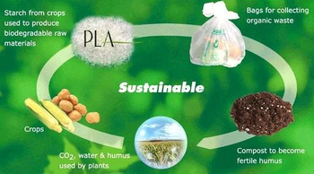 Biodegradable plastics,you need correct understanding it